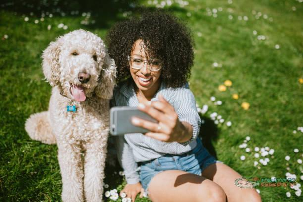 A Young Woman Takes Selfie With Pet Poodle Dog puppysimply