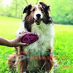 Kong Zoom Groom Best manual toy for dog grooming 1