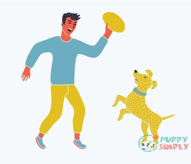 Illustration of a boy running with his pet dog vector art illustration Is A Frisbee The Right Toy For Your Dog?