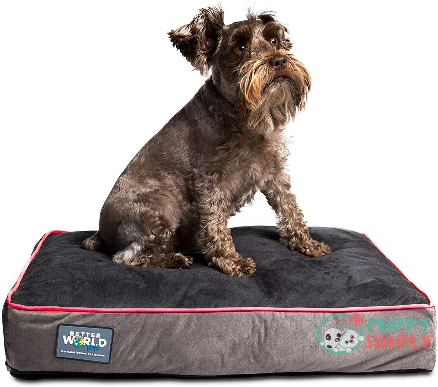 Better World Pets 5-inch Thick