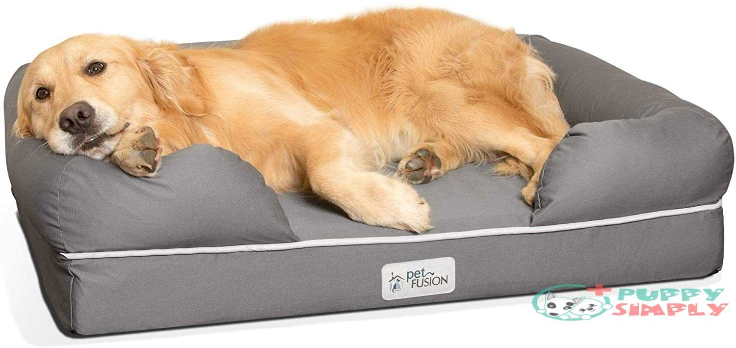PetFusion Ultimate Dog Bed, Solid