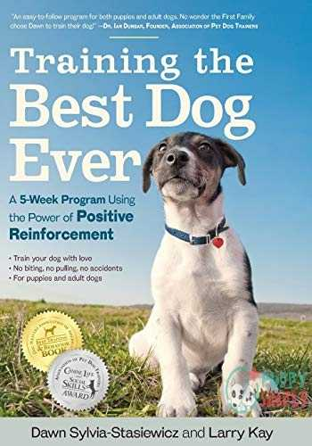 Training the Best Dog Ever: