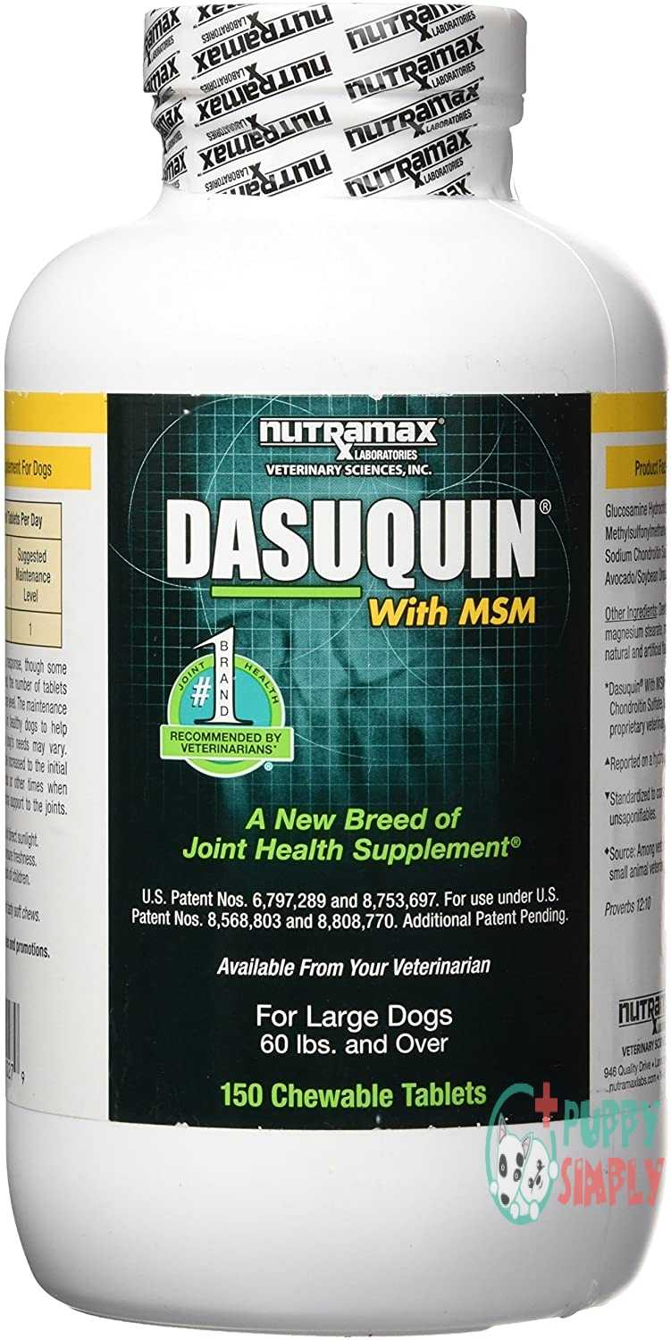 Nutramax Dasuquin With MSM Chewables