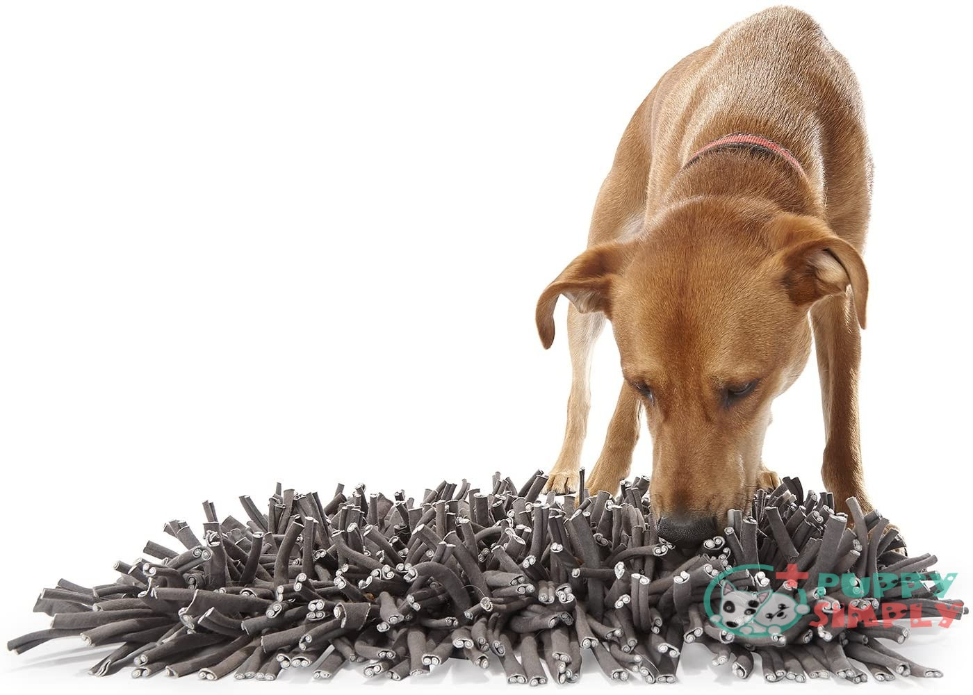 PAW5: Wooly Snuffle Mat -