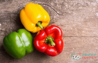 The Benefits of Bell Peppers for Dogs