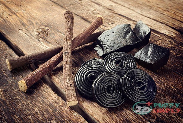 Can Dogs Eat Licorice