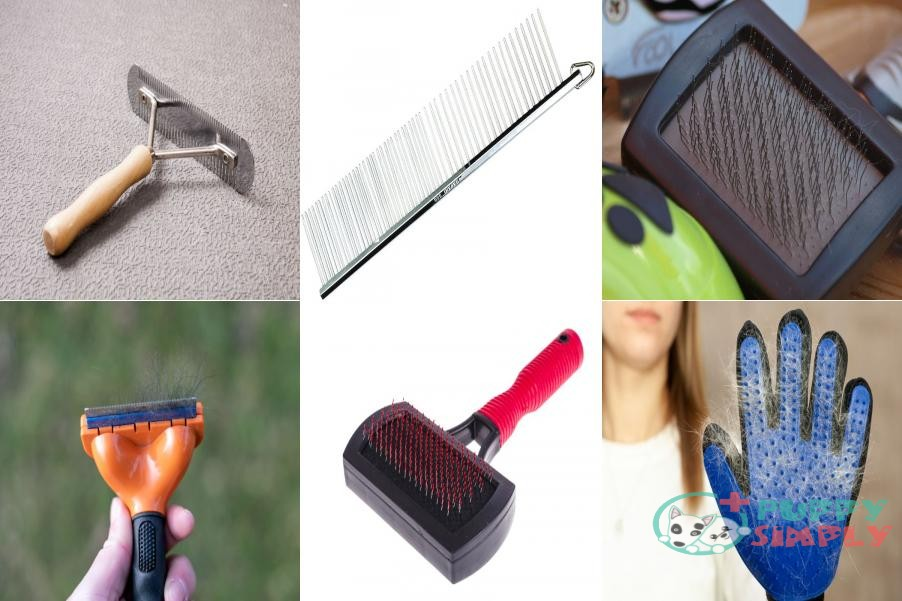 Different Types of Husky Brushes