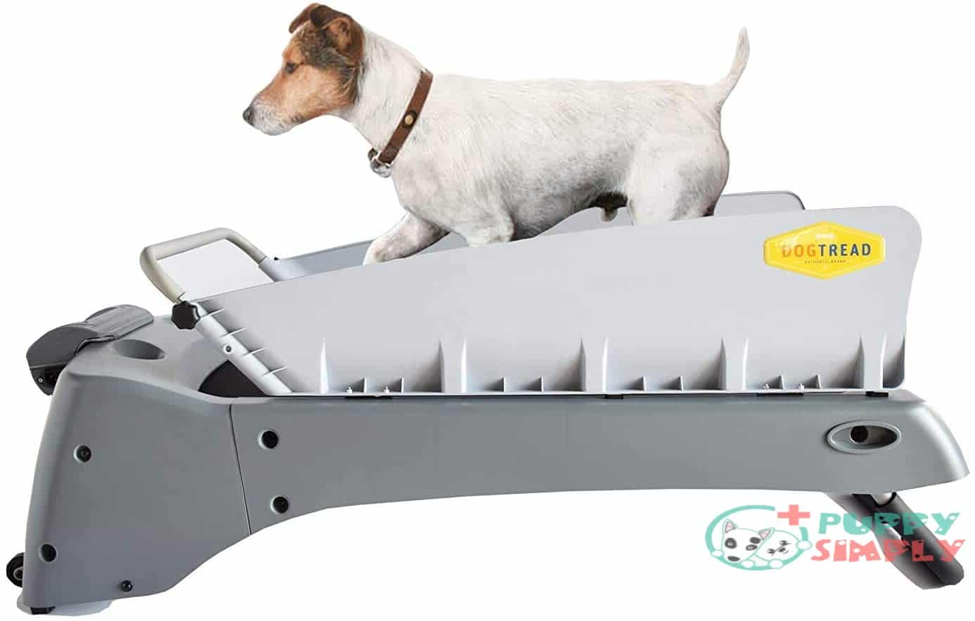 Dogtread Treadmill for Small Dogs