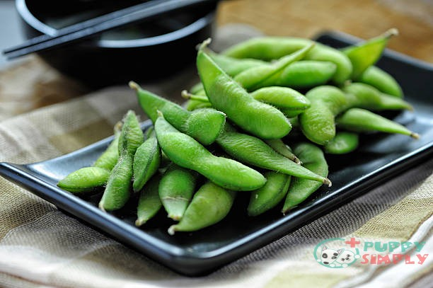 What are Edamame Beans?